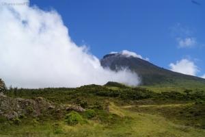 Paisagem Natural/Ilha do Pico