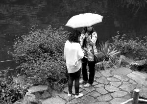 /Na chuva de Junho