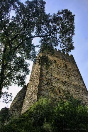 História/Torre de Menagem