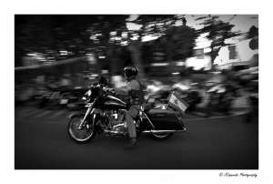 Outros/Harley Panning