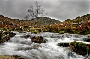 Paisagem Natural/Força da água