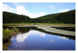 Paisagem Natural/Lagoa do Canario