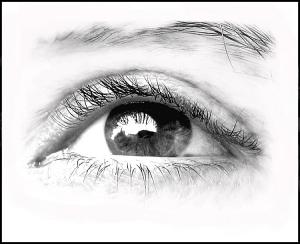 /O meu olhar...