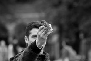 /Les oiseaux de Paris (I)
