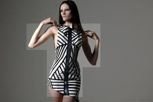 /Fashion Lines IV