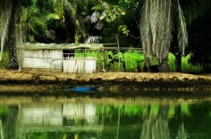 Gentes e Locais/Vivendo no Rio Kwanza