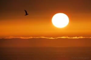 Paisagem Natural/A caminho do Sol  (Jot Quest)