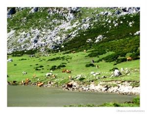 Paisagem Natural/Picos da Ruropa (VII)