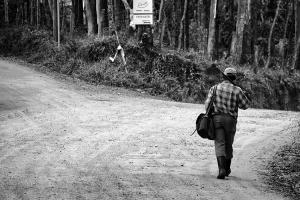 Gentes e Locais/Caminhos da vida
