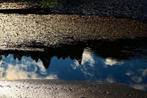 Paisagem Natural/Reflection