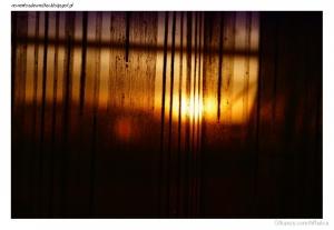 Outros/A minha janela