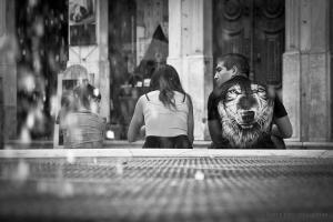 Gentes e Locais/Sitting Wolf