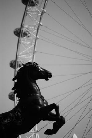 /Salta cavalinho