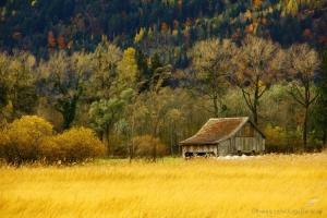 Paisagem Natural/Paisagem Outono.