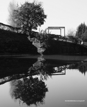 /O Lago das Árvores Gémeas...