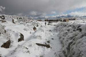 Paisagem Natural/caminhar na neve