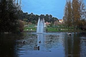 Paisagem Natural/Parque Cidade Barreiro