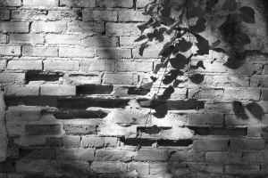 Abstrato/The Wall