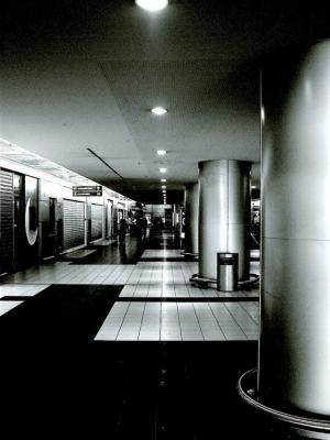 Gentes e Locais/trilho de luz
