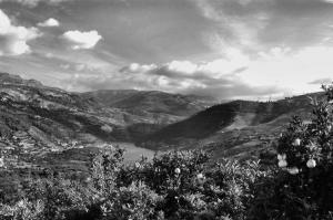 /... Douro ...