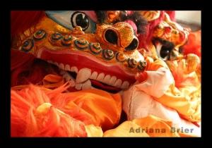 Gentes e Locais/Ano Novo Chinês