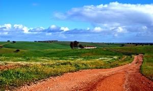 Paisagem Natural/Estrada com Fim