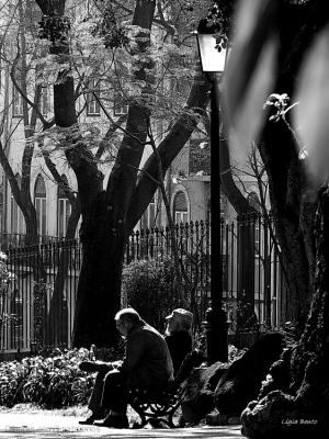 Gentes e Locais/Os velhos do jardim...