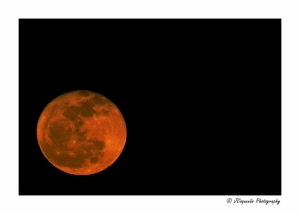 Outros/Full Red Moon