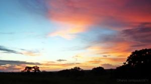 Paisagem Natural/pintar o céu, em tons de...