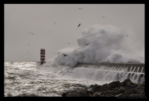 Fotojornalismo/Mar em Fúria