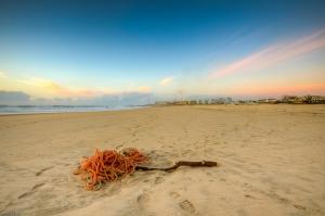 Paisagem Natural/Leça da Palmeira