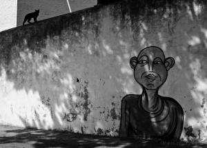 /O Gato Que Se Julgava Dono Do Muro