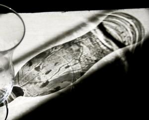 Abstrato/Sombra bordadeira