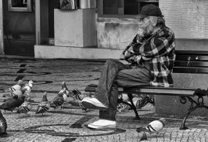 Gentes e Locais/Guardador de pombos
