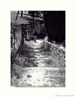 Outros/Caminhos incertos