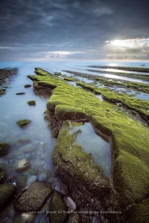 Paisagem Natural/A praia das pedras verdes