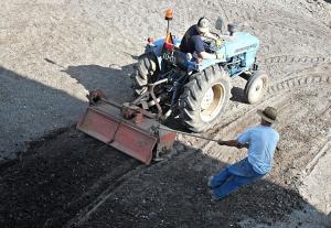 Outros/Preparar o solo para a plantação