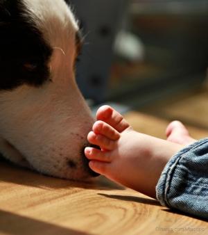Outros/smelly feet