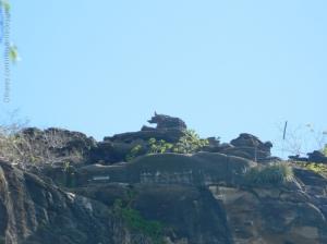 Paisagem Natural/Pedra do Hipopotamo