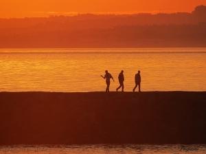 Paisagem Natural/Três bons amigos e um por do sol