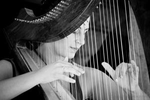 Espetáculos/harpa