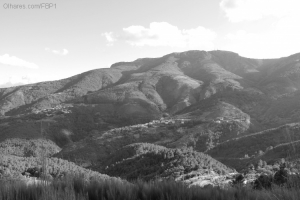 Paisagem Natural/Uma paisagem a P&B...