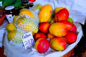 Gentes e Locais/papaia