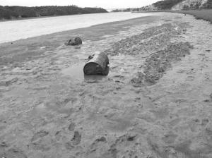 Gentes e Locais/Maré baixa (Rio Mira)
