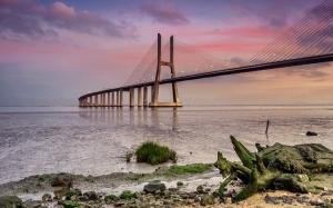 Paisagem Urbana/Ponte Vasco da Gama (V)