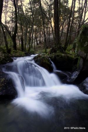 Paisagem Natural/Rio Leça