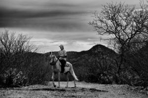 Fotojornalismo/Vaqueiro do Acarí