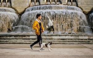 Gentes e Locais/Walking dog...