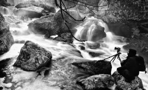 """Paisagem Natural/""""O fotógrafo"""""""