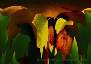 Arte Digital/Tela de Outono